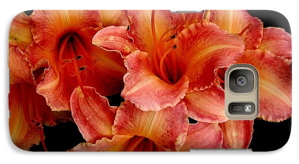 Galaxy Case featuring the photograph Daylilies 1 by Rose Santuci-Sofranko