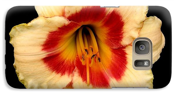 Galaxy Case featuring the photograph Daylily 3 by Rose Santuci-Sofranko