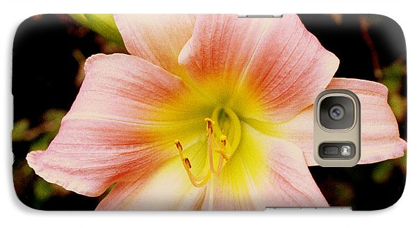 Galaxy Case featuring the photograph Daylily by Tom Brickhouse