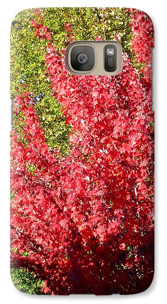 Galaxy Case featuring the photograph Days Like This by Kathy Bassett