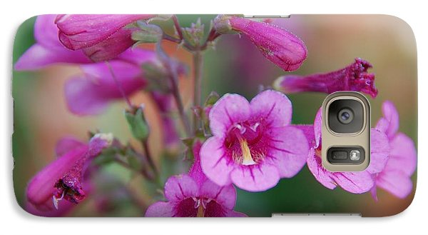 Galaxy Case featuring the photograph Pink Flowers by Tam Ryan