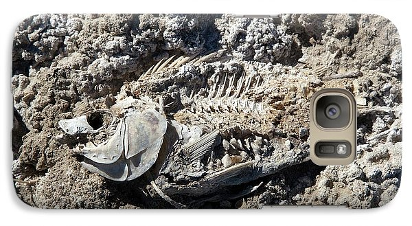 Dead Fish On Salt Flat Galaxy S7 Case