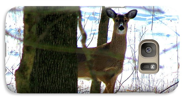 Galaxy Case featuring the photograph Deer At Park by Eric Switzer