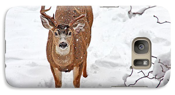 Galaxy Case featuring the photograph Deer Buck In Snow by Peggy Collins