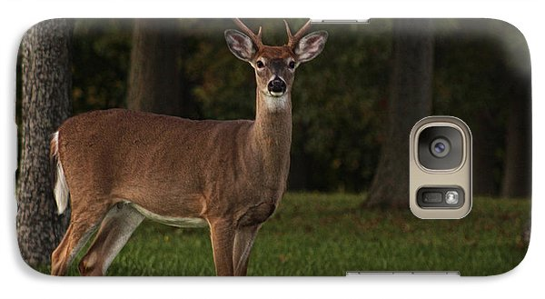 Galaxy Case featuring the photograph Deer In Headlight Look by Tammy Espino