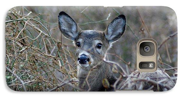 Galaxy Case featuring the photograph Deer by Karen Silvestri