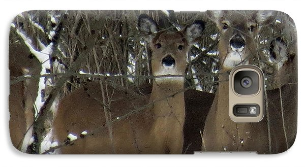 Galaxy Case featuring the photograph Deer Posing For Picture by Eric Switzer