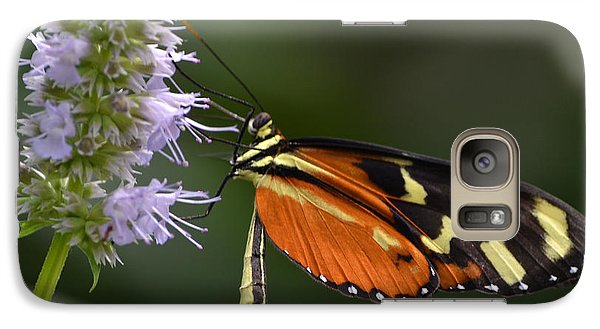 Galaxy Case featuring the photograph Delicacy by Mary Zeman