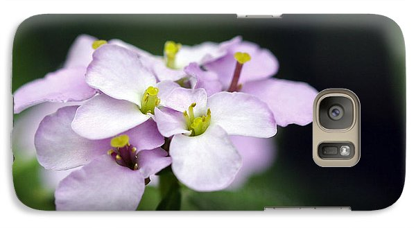 Galaxy Case featuring the photograph Delicate Beauty by Denise Pohl