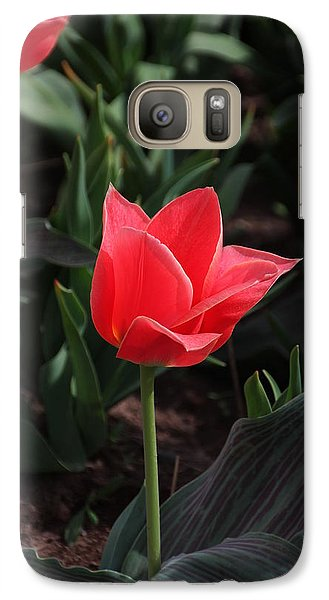 Galaxy Case featuring the photograph Delicate Red Tulip by Bill Woodstock