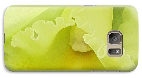 Galaxy Case featuring the photograph Delicate Shades by John Freidenberg