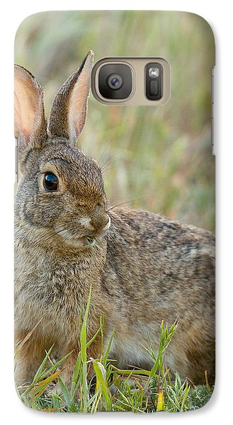 Galaxy Case featuring the photograph Desert Cottontail by Doug Herr