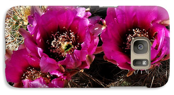 Galaxy Case featuring the photograph Desert Wildflower by Diane Lent