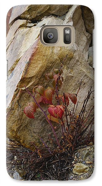 Galaxy Case featuring the photograph Determined by Rhonda McDougall