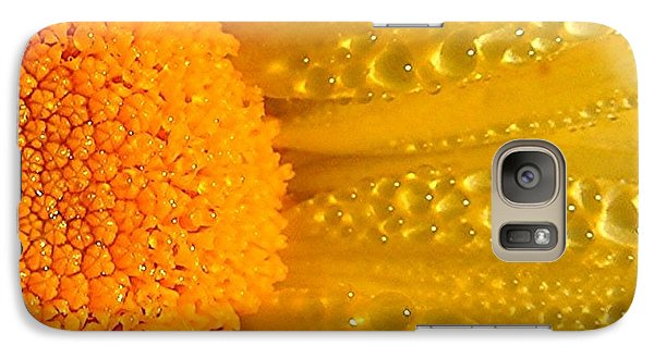 Galaxy Case featuring the photograph Dew Drops On Daisy by Terri Gostola