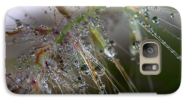 Galaxy Case featuring the photograph Dew On Fountain Grass by Joe Schofield
