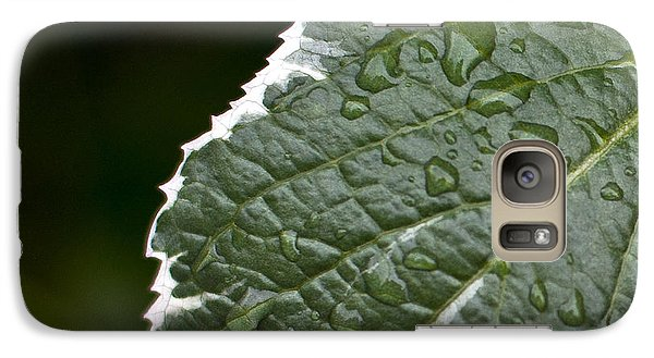 Galaxy Case featuring the photograph Dew On Leaf by Crystal Hoeveler