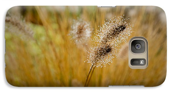 Dew On Ornamental Grass No. 4 Galaxy S7 Case