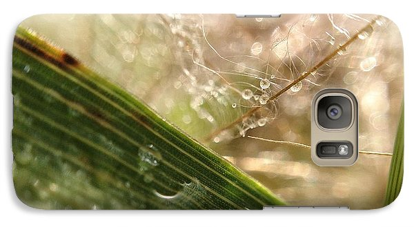 Galaxy Case featuring the photograph Dewy Dandelions by Nikki McInnes
