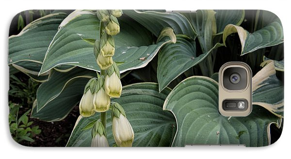 Galaxy Case featuring the photograph Digitalis by Leif Sohlman