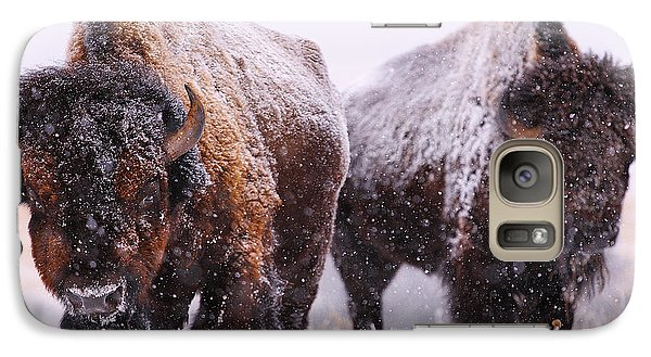 Buffalo Galaxy S7 Case - Dimensions  by Kadek Susanto