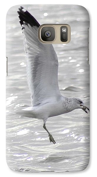 Galaxy Case featuring the photograph Dining Seagull by Anita Oakley
