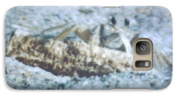 Galaxy Case featuring the photograph Beach Crab Snacking by Belinda Lee