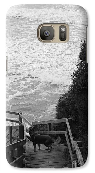 Galaxy Case featuring the photograph Dog On Sea Stairs by Amanda Holmes Tzafrir