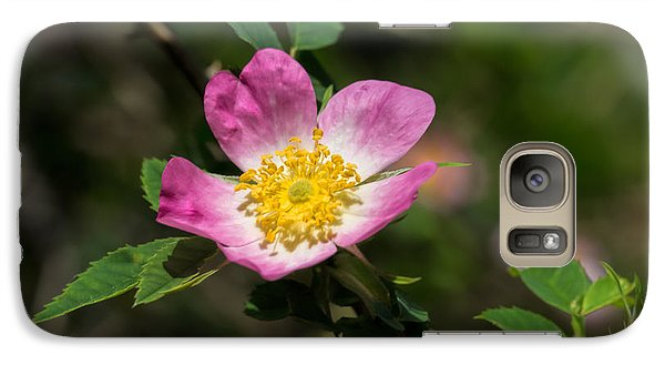 Galaxy Case featuring the photograph Dog-rose by Leif Sohlman