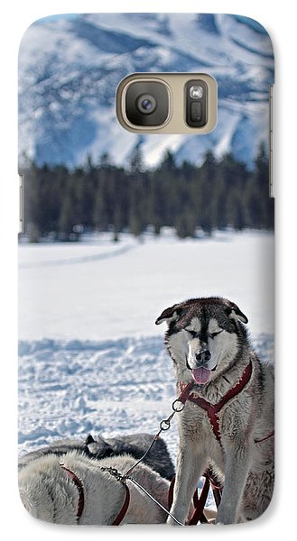 Galaxy Case featuring the photograph Dog Team by Duncan Selby