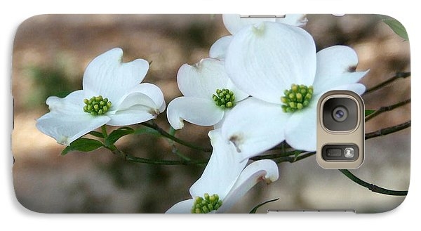 Galaxy Case featuring the photograph Dogwood 2 by Andrea Anderegg