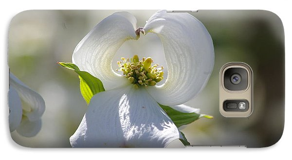 Galaxy Case featuring the photograph Dogwood Flower by Tannis  Baldwin