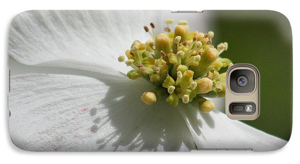 Galaxy Case featuring the photograph Dogwood Up Close by Anita Oakley