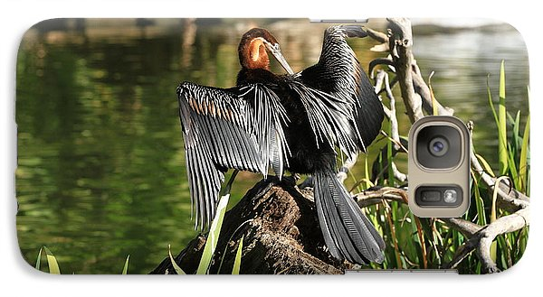 Galaxy Case featuring the photograph Double-crested Cormorant by Edward R Wisell