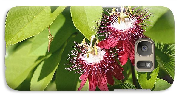 Galaxy Case featuring the photograph Double Red Passion Flowers by Living Color Photography Lorraine Lynch