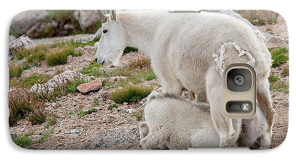 Galaxy Case featuring the photograph Double The Fun by Jim Garrison