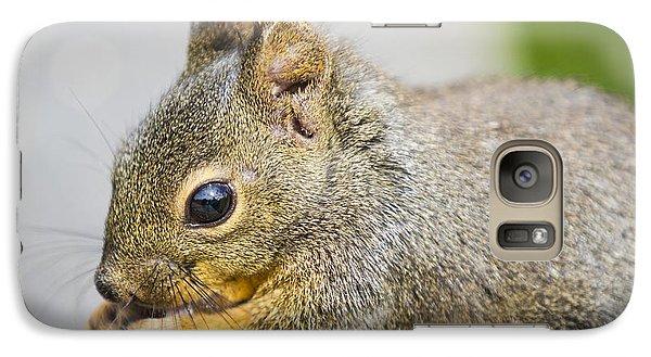 Douglas Squirrel  Galaxy S7 Case