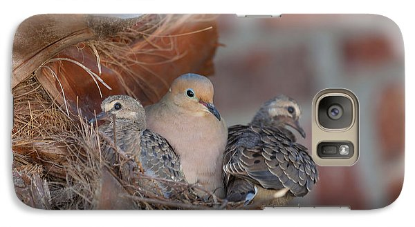 Galaxy Case featuring the photograph Dove Nest 4 by Gregory Daley  PPSA