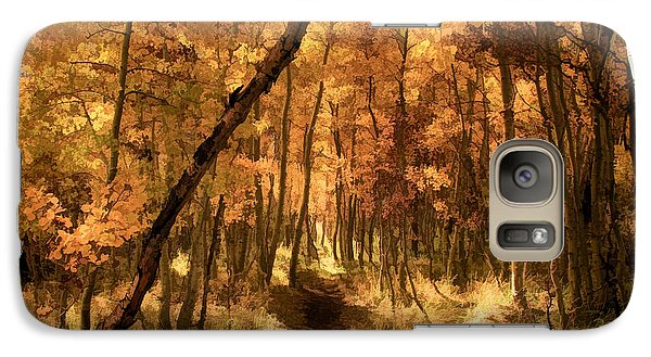 Galaxy Case featuring the photograph Down The Golden Path by Donna Kennedy