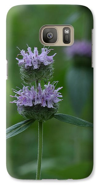 Galaxy Case featuring the photograph Downy Wood Mint by Daniel Reed