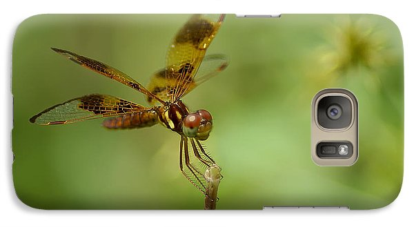 Galaxy Case featuring the photograph Dragonfly 2 by Olga Hamilton