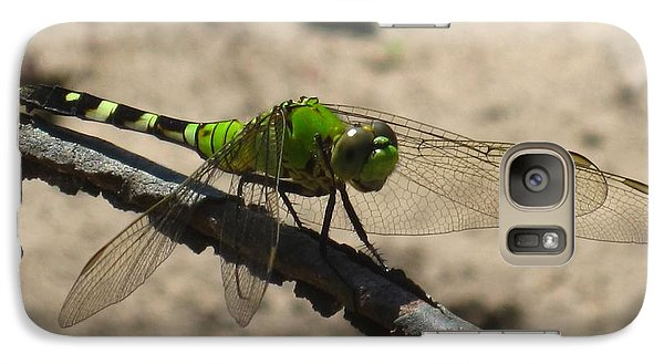 Galaxy Case featuring the photograph Dragonfly Eastern Pondhawk by Margaret Newcomb