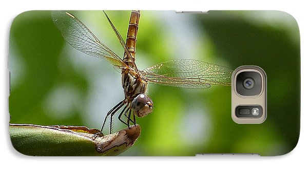 Galaxy Case featuring the photograph Dragonfly by Janina  Suuronen