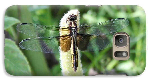 Galaxy Case featuring the photograph Dragonfly by Karen Silvestri