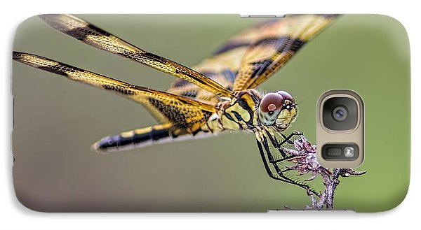 Galaxy Case featuring the photograph The Halloween Pennant Dragonfly by Olga Hamilton