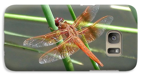 Galaxy Case featuring the photograph Dragonfly Orange by Kerri Mortenson