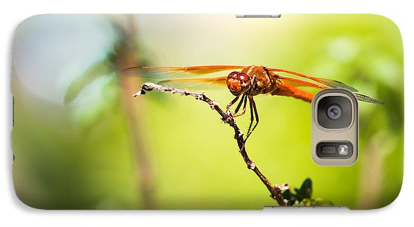 Galaxy Case featuring the photograph Dragonfly Smile by Priya Ghose