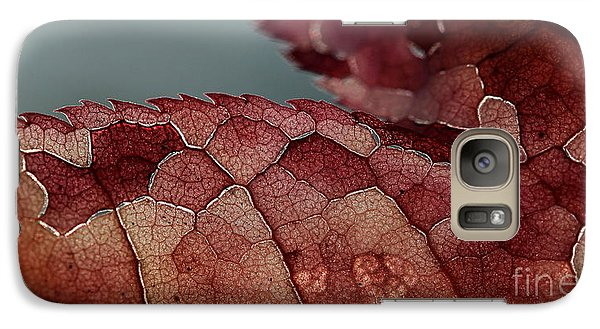 Galaxy Case featuring the photograph Dragon's Spine by Kenny Glotfelty