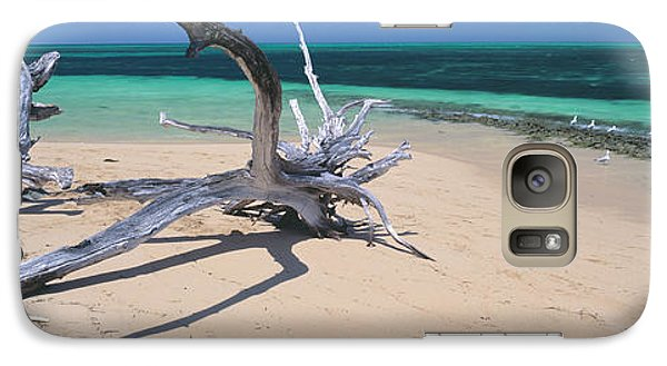 Driftwood On The Beach, Green Island Galaxy Case by Panoramic Images