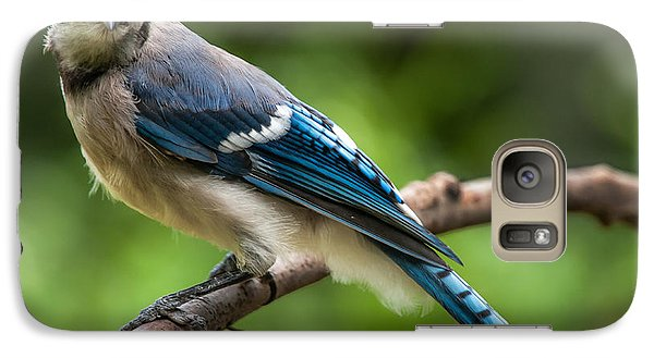 Galaxy Case featuring the photograph Droll Jay by Jim Moore